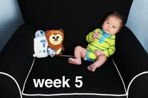 week5sm
