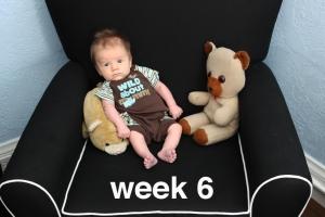 week6sm